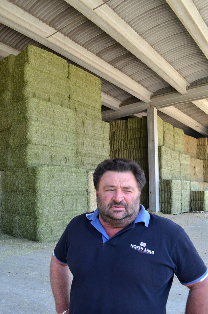 Daniele Nucci has allergies, so entering the hangar where his company's hay is processed is an irritating experience. Photo by K. Greer / Gonzaga in Cagli